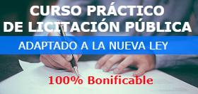 licitaciones publicas - curso práctico